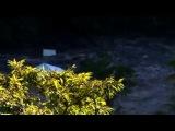 Подводная империя / Underwater Universe (2011) 01. Волны-убийцы / Killer Shockwaves